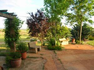 masia junio2008 069